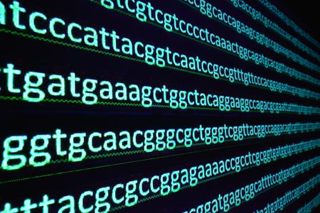 유전자 시퀀싱. 디코딩 된 DNA 분자의 뉴클레오타이드 염기 서열. 스톡 콘텐츠
