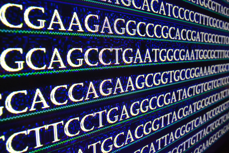 nucleotide: Sequencing of the genome in the laboratory. Sequence of genes in symbols of nucleotide bases.