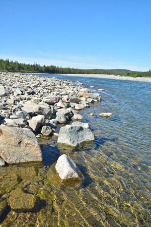 ural: River in the Polar Urals. Summer water landscape of northern nature. Stock Photo