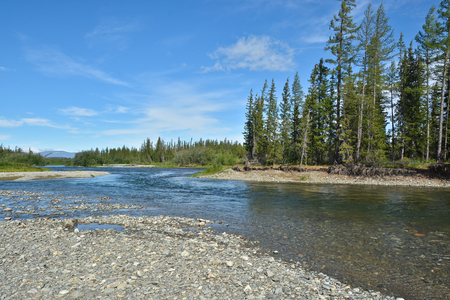 ural: Clean beautiful river in the polar Urals. Water landscape in the North of Russia in the summer.