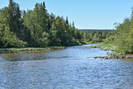 Virgin Komi Forests. The Shchugor River in the Northern Urals, Yugyd va National Park. Stock Photo