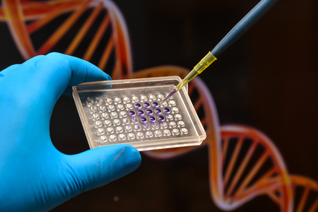 DNA testing in a scientific laboratory. Genome research using modern biotechnology methods.