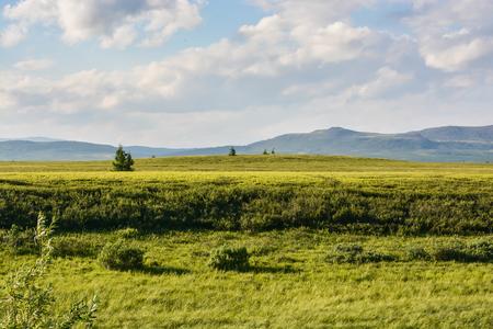 Foothill tundra. Summer polar landscape. Stok Fotoğraf