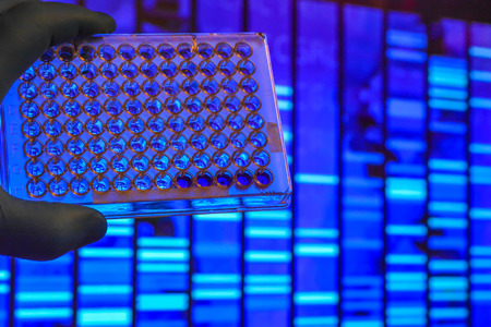 DNA testing. Well plate on the background of electrophoregram. Archivio Fotografico