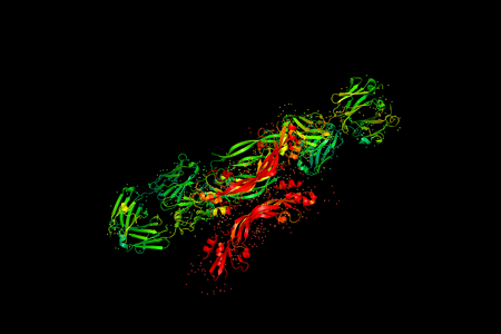 Three-dimensional crystal structure of protein molecule, tumor growth marker. 3D model of a biopolymer is a peptide.