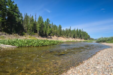 North river on a summer day. Taiga river in the national Park.