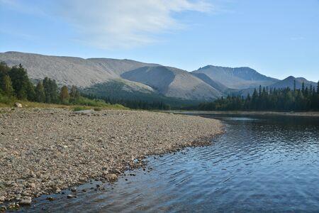 Virgin Komi forests in the Northern Urals. Summer landscape in the national Park Yugyd VA.