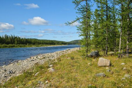 Northern taiga river in the Polar Urals. Summer water landscape, Haramatolou river in the Yamalo-Nenets Autonomous district, Russia. Imagens