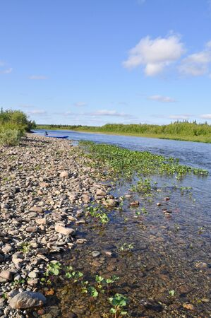 Wild river landscape. The pebbly shore of the North river Kokpela in the polar Ural, Komi Republic, Russia.