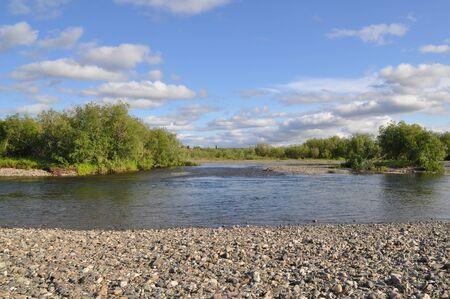 Wild river landscape in the polar Urals. The pebbly shore of the North river Kokpela, Republic of Komi, Russia. Imagens