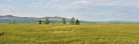 Panorama of the tundra in the natural Park on Taimyr. Summer landscape in the polar Urals.
