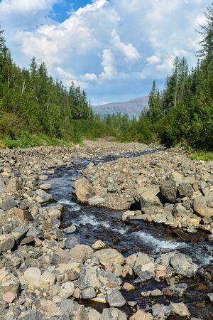 Mountain stream on the Putorana plateau. Summer mountain landscape in the north of Siberia.