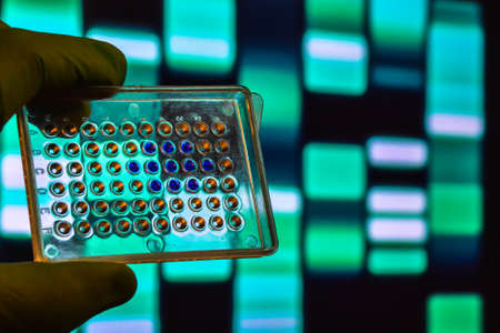 DNA testing. Well plate on the background of electrophoregram. Stock Photo