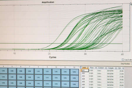Amplification curves for real-time PCR reactions. Monitoring the progress of quantitative real-time PCR on a computer monitor. Imagens