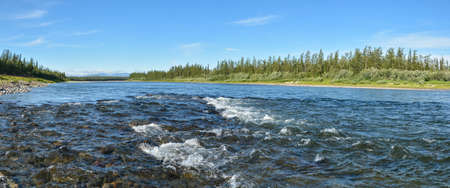 Panorama of the northern river. Water landscape, river on the eastern slope of the Polar Urals.