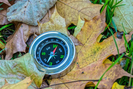 Compass on fallen leaves. Don't get lost this fall. 版權商用圖片