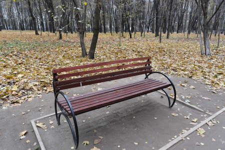 Bench in the autumn park. Park bench surrounded by fallen leaves in the city park.