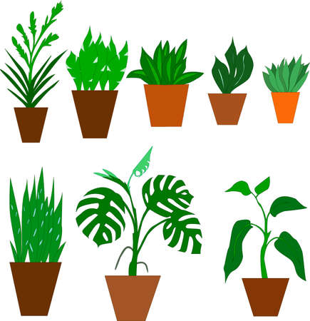 set of color images of flowerpots and houseplants 向量圖像