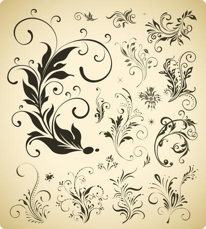ornament elements collection Illustration
