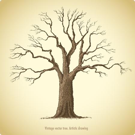 ek: Träd