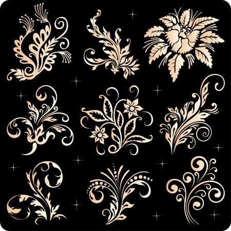 Vintage floral elements, ornament frames and gold flourishes Stock Vector - 10502481