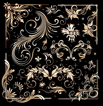 Vintage floral elements, ornament frames and gold flourishes  Vector