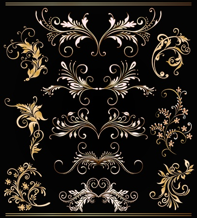 scroll border: ornament vector elements, vintage gold floral designs  Illustration