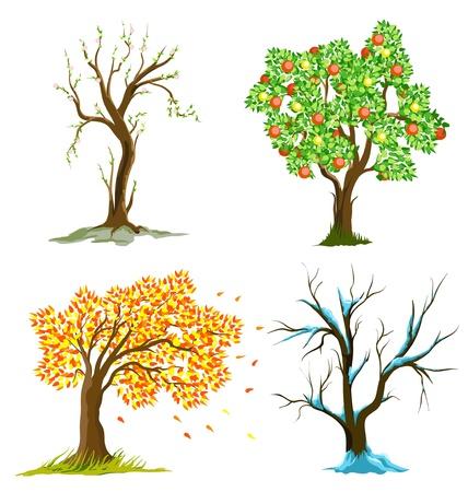 arbol de manzanas: árbol de la temporada