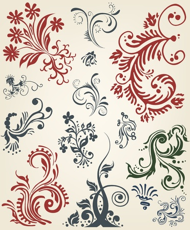 Ornament floral vector elements  Vector