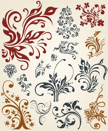 flores: Ornament floral vector elements  Illustration
