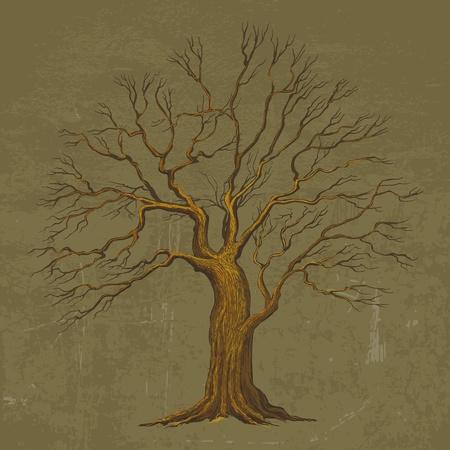 트렁크스: 큰 나무의 벡터 일러스트 레이 션