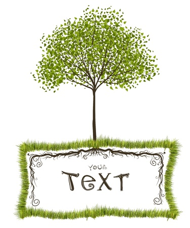 square root: Tree nature vector frame design