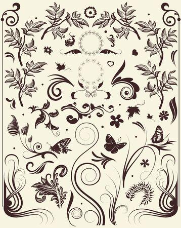 classic art: Floral ornament vector elements