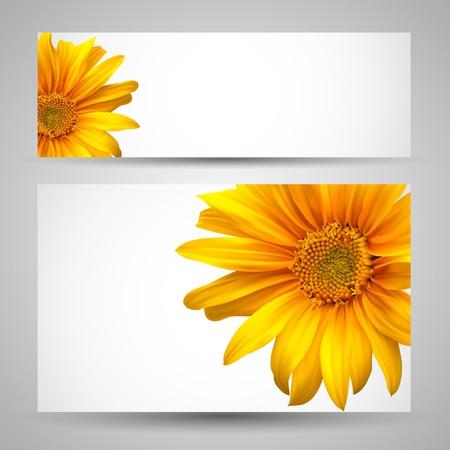 girasol: Flor de plantillas vectoriales de fondo Vectores