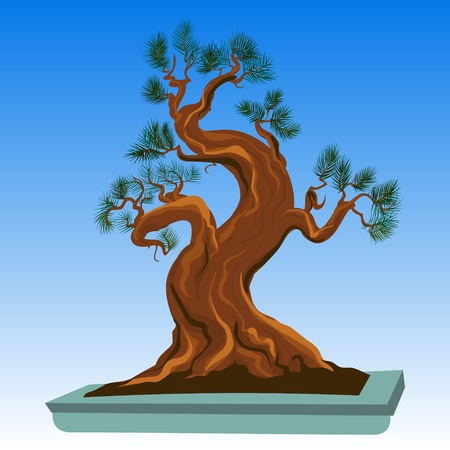 Old Bonsai Tree Vector