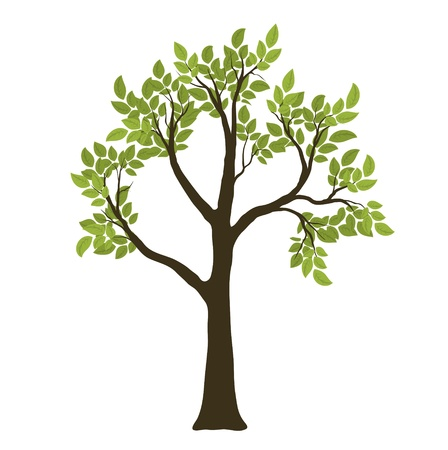 life style: Arbre Vecteur vert. Symbole de la nature