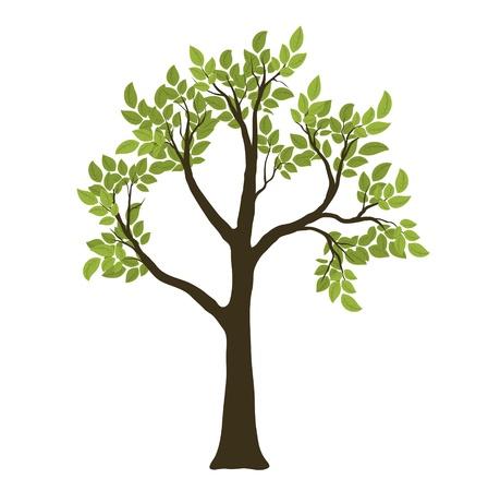 yaşam tarzı: Green Vector Tree. Nature Symbol
