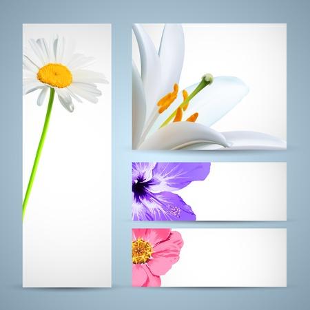 folleto: Flor plantilla de folleto. Dise�o para fondo