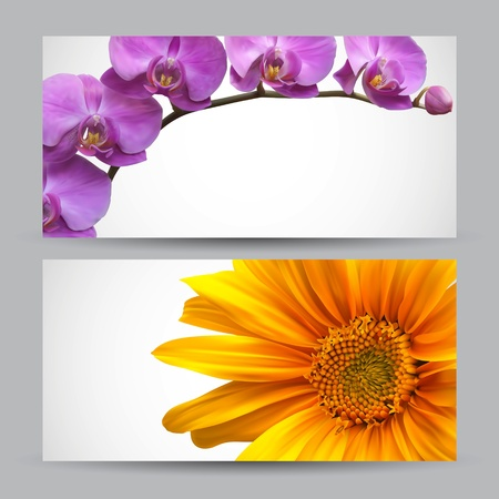 tropical border: Flower brochure vector designs