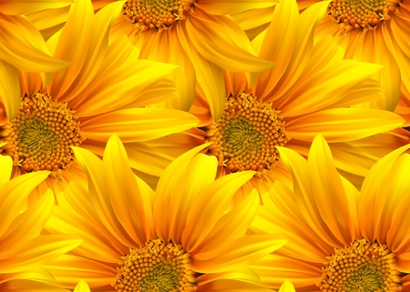 Flower seamless. Sunflower nature background Vector