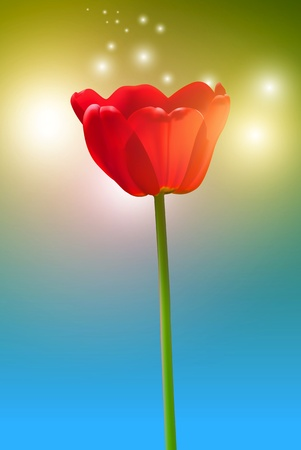 Abstract flower background. Vector tulip Vector