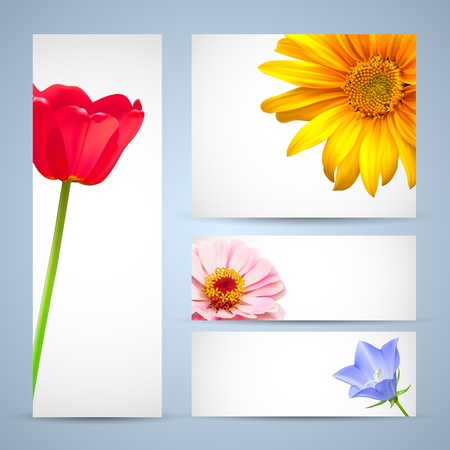 Brochure template design, flower layout backgrounds Vector