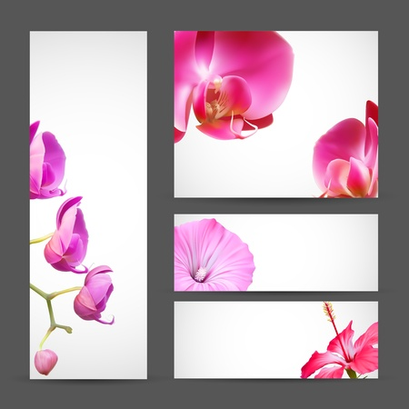 Flower brochure template. Orchid and Hibiscus Blossom Vector