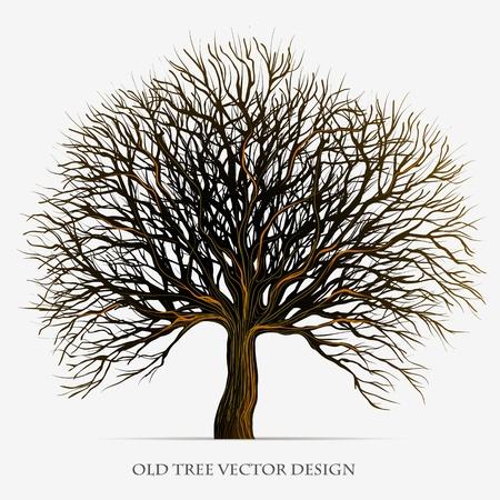 fa: Fa sziluett ábra tervezés Illusztráció