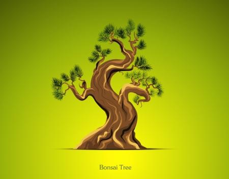 Bonsai Tree Background