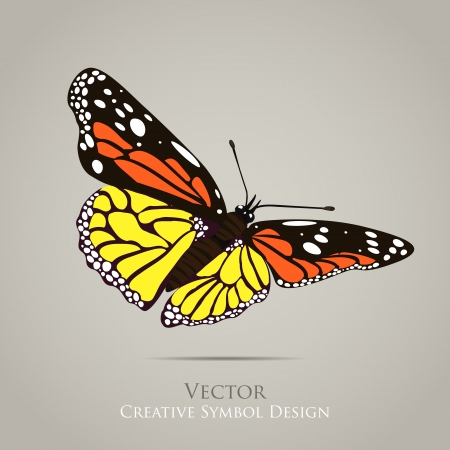 Butterfly graphic design background Vector