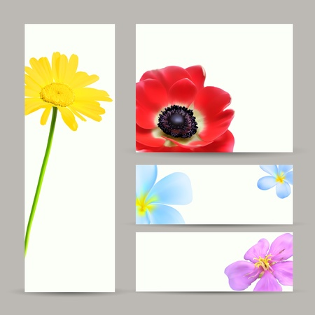 Brochure Cards Template Vector Design. Flower Blossom Backgrounds Çizim