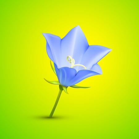bluebells: Bluebell flower abstract  illustration