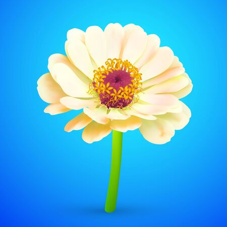 Abstract Flower  Icon Vector