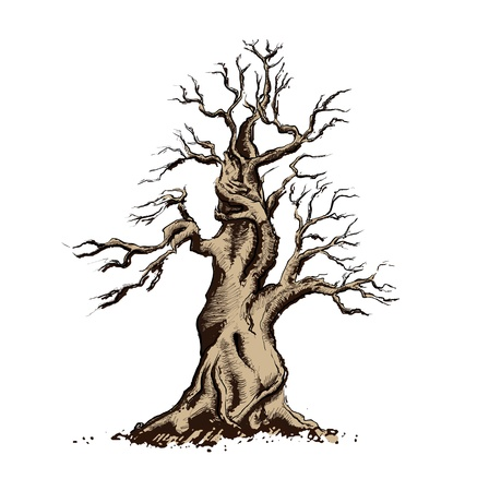 Tree Silhouette  Illustration. Bonsai Art